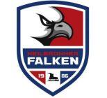 Sponsoring der Heilbronner Falken in der Saison 2019/2020